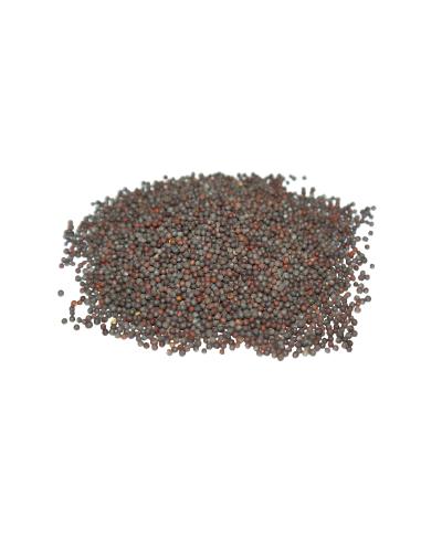 Senape nera in grani 30 gr.