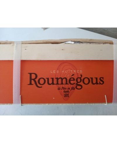 Roumegous Special ostrica n. 2 - 24 pezzi