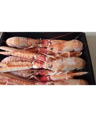 Scampi XXL 2-3 pezzi per Kg pescato Islanda kg 1.8