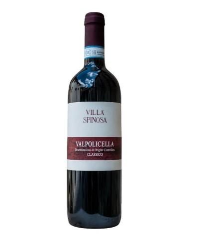 Valpolicella classico - Villa Spinosa 2019